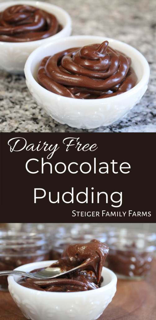 one image of two jars of diary free chocolate pudding and one image of a jar of dairy free chocolate pudding with a spoonful of pudding laying on top separated by a box of text.