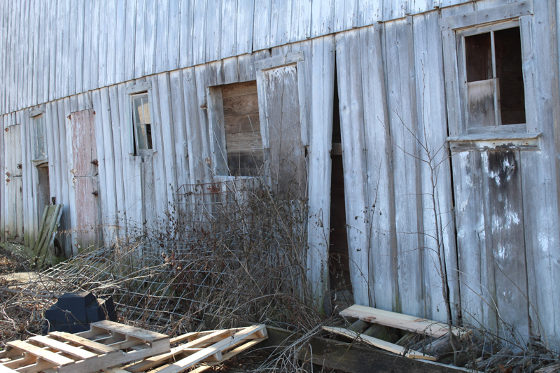 side of the barn where the stall doors are