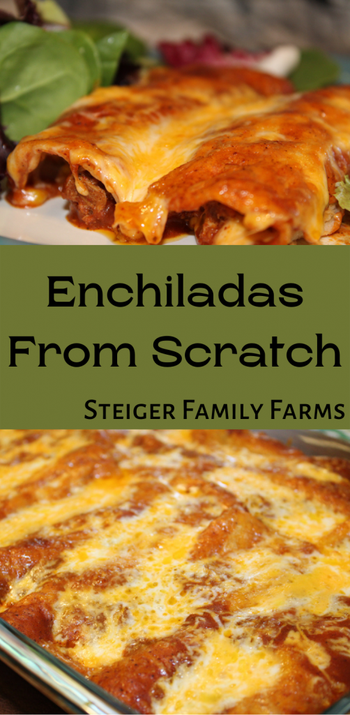 two images of enchiladas separated by a green box filled with text