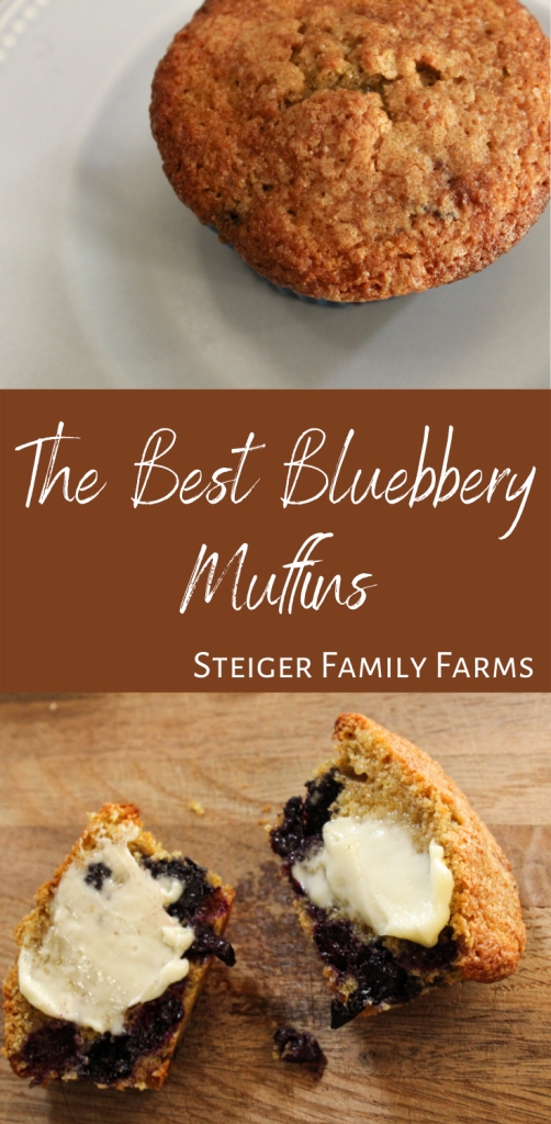 two images of the best blueberry muffins separated by a brown box with white text
