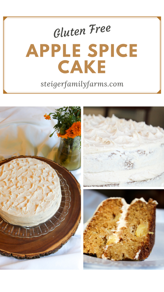Text on top and three pictures below of the apple spice cake