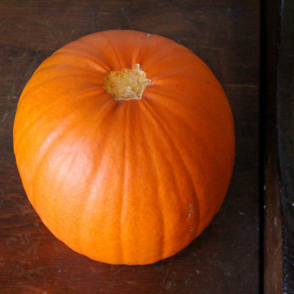 orange pie pumpkin sitting on a wooden bench. Top view. The stem of the pumpkin broke off.